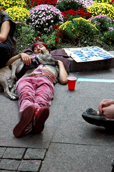 occupywallstreet_stay_clear_of_the_plants.jpg