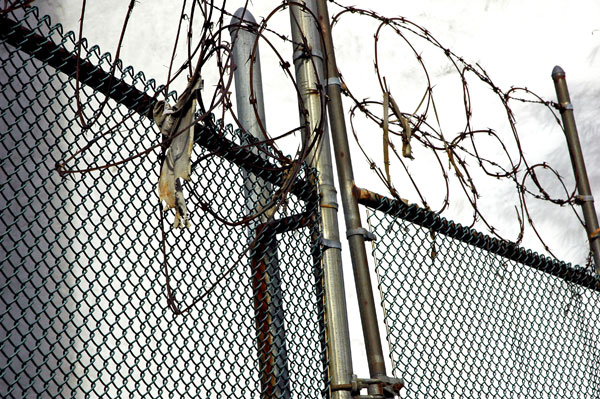 razor_wire_Henry_Street.jpg